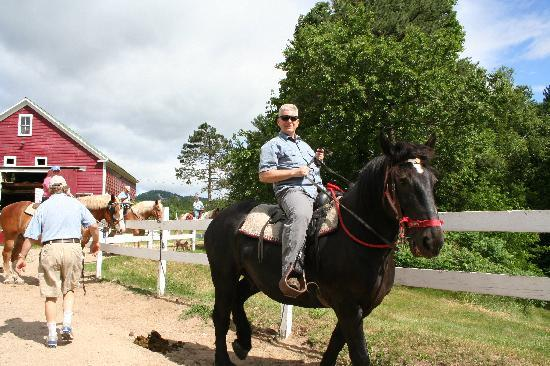 Farm by the River Bed and Breakfast with Stables: Trail riding at the Farm By The River