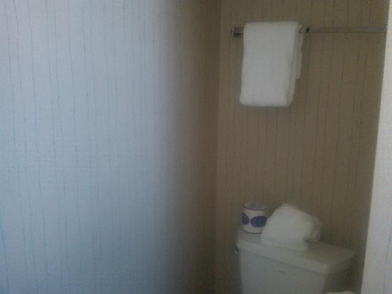 Mountain View Motel: Bathroom wallpaper