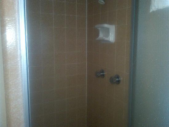 Mountain View Motel: Shower