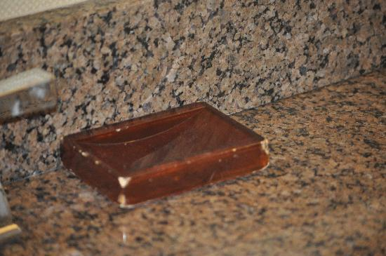 Providence Marriott Downtown: Soap Dish