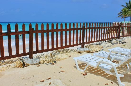 Maxwell Beach Apartments: view from the sunlounger