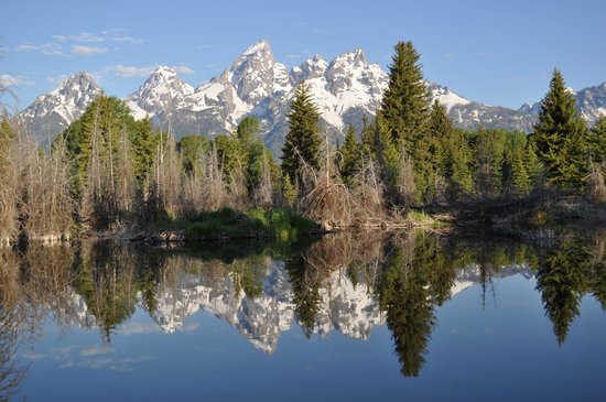 Teton Scenic Floats and Fly Fishing