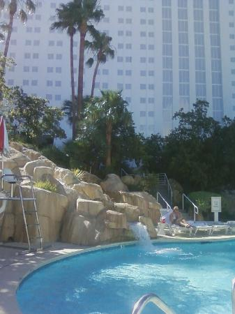 Tropicana Las Vegas - A DoubleTree by Hilton Hotel: our time at the pool