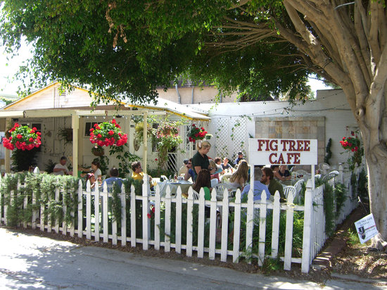 Fig Tree Cafe Menu Pb