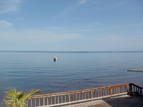 Panama Divers PADI Dive Resort: View from the hotel bar
