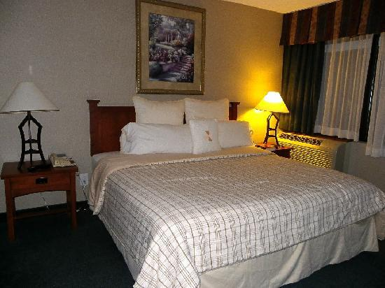Four Points by Sheraton St. Catharines Niagara Suites: King Suite