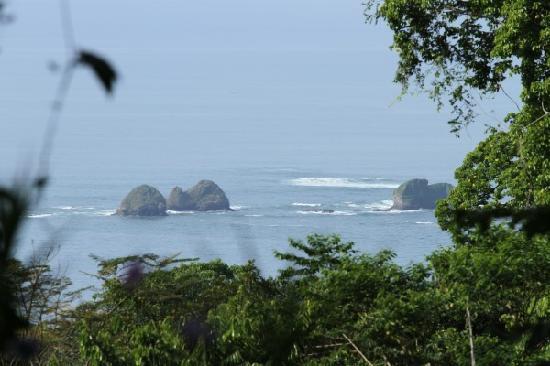 写真Mar y Selva Ecolodge枚