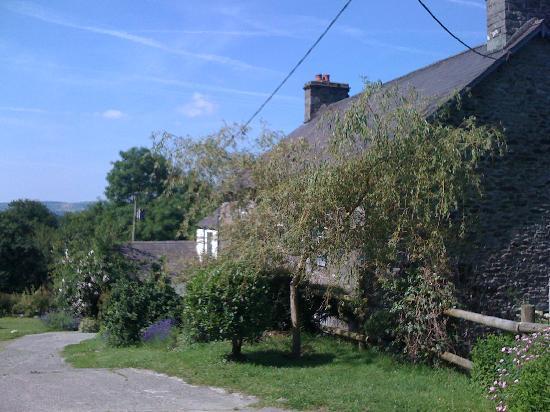 Nantgwynfaen Organic Farm : the farm house