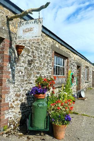 Nantgwynfaen Organic Farm : The organic farm shop