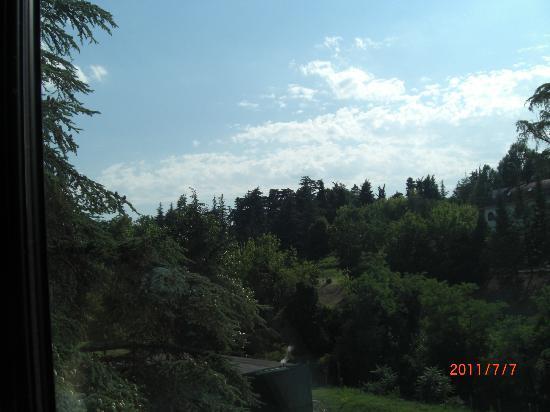 Fratta Terme, Italia: Vista sul parco