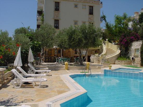 Hotel dionysia pool area
