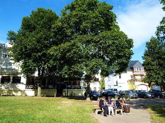 Trittenheim, Almanya: Haus aus Blickrichtung Mosel