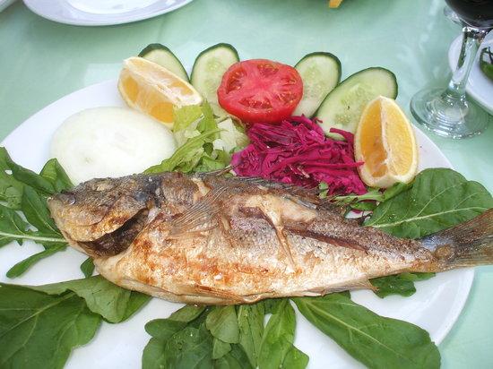 Murphy's Restaurant & Bar: Fish dish