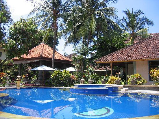 Bendesa Accommodation : pool