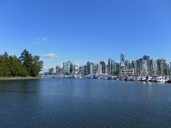 Buchan Hotel : Beautiful Vancouver