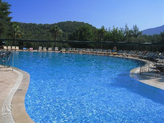 Green Forest Hotel: Immaculate pool area