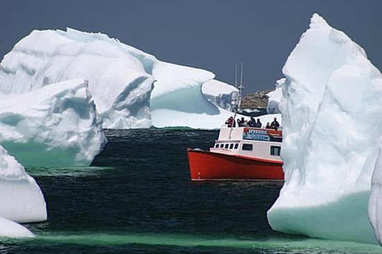 Iceberg Quest Ocean Tours Twillingate All You Need To