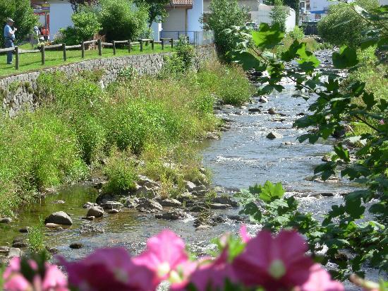 Ibis La Bresse Gerardmer : La Moselotte - jolie balade à faire le long de cette petite rivière