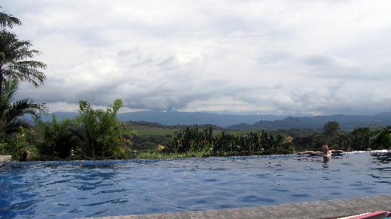 Posada Mimosa: Pool and View