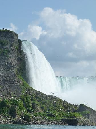 加拿大照片