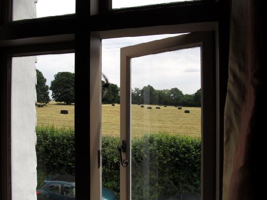Hawkley Inn: view from our room