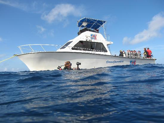 Ocean Encounters Diving: dive boat