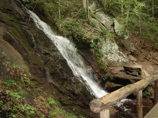 Deep Creek Tube Center: on the hiking trail