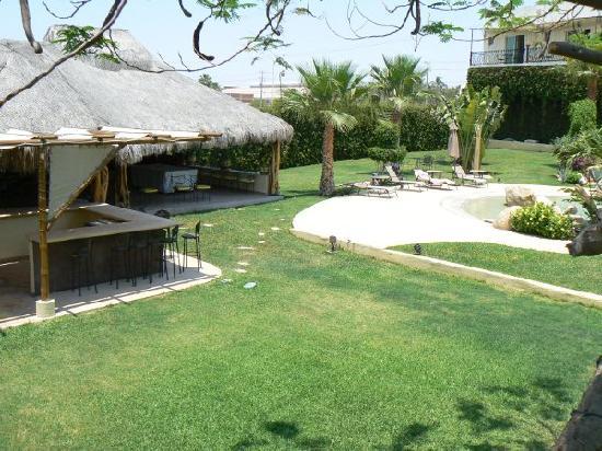 Positano Hotel: well maintanced  Garden