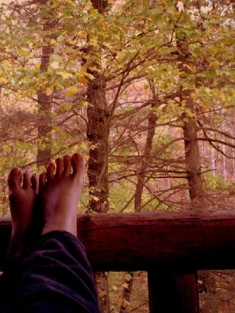 Asheville Cabin Rentals: Relaxing!