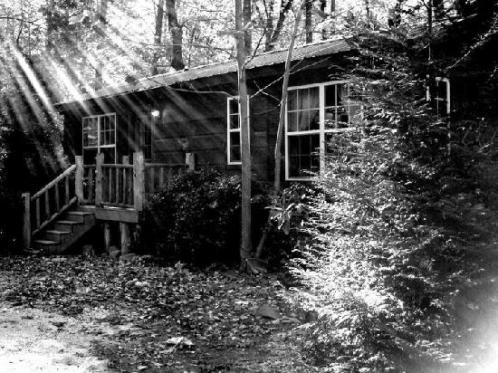 Asheville Cabin Rentals: Black & White of the cabin.