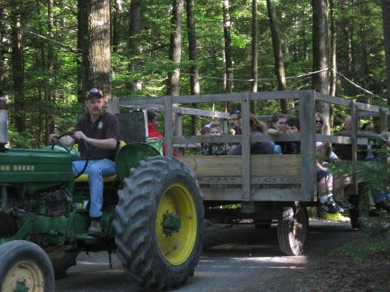 Rip Van Winkle Campgrounds: Hay Ride