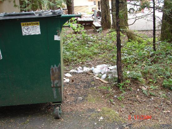 Garbage Around The Dumpster Picture Of Belknap Hot Springs Lodge And Gardens Mckenzie Bridge
