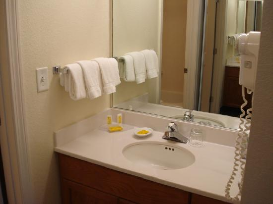 Residence Inn Boston Framingham: Sink