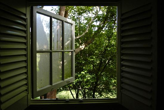 Manka's Inverness Lodge: View from the bathroom window