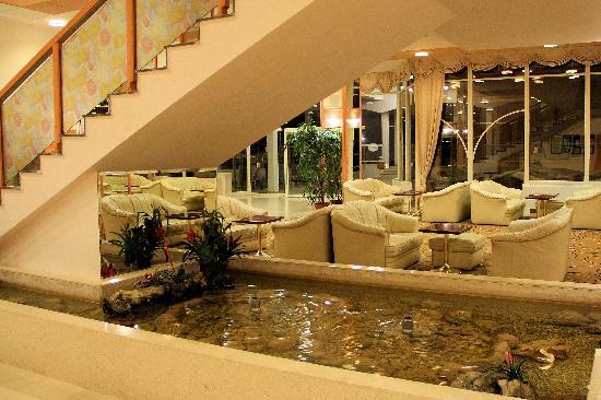 Hotel Laguna Materada: salon cosy à l'acceuil