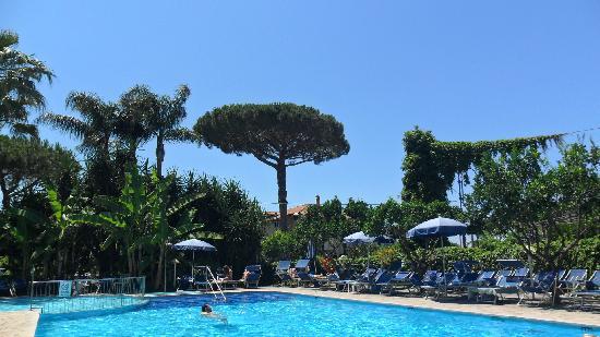 Alpha Hotel: Hotel Alpha pool