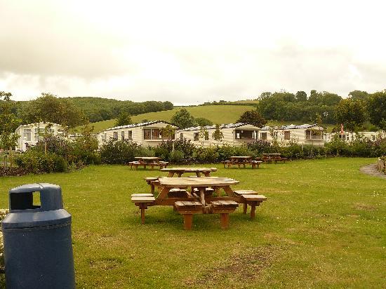 Doniford Bay Holiday Park - Haven: Part of camp