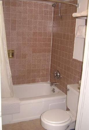 Executive Inn & Suites: Bathroom