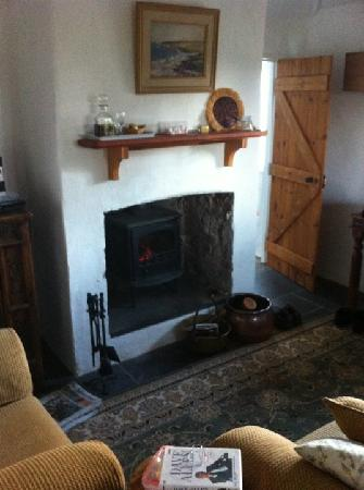 Brooklands Heritage B&B: A nice fire