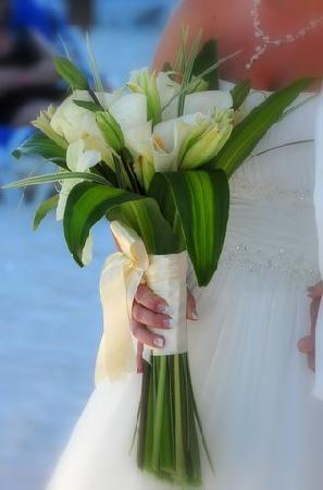 Great Parnassus Family Resort : Flowers were perfect