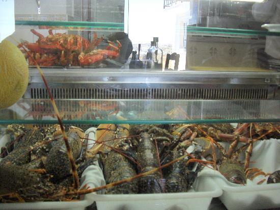 Varanda do Oceano: Seafood display