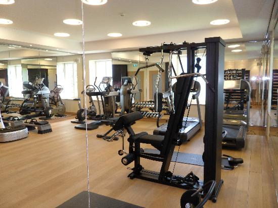 Hotel Villa Honegg : Gym
