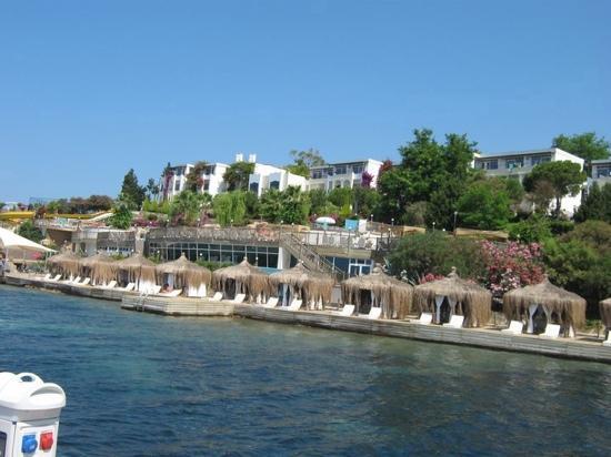 Kadikale Resort: how cud u not love this place