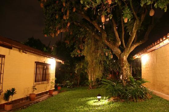Hotel Poblado Campestre : Jardin