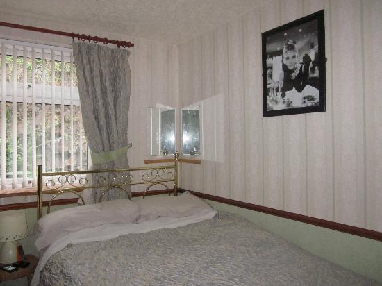 Plas Trevor Bed & Breakfast : Room 2 (1 double- shared)