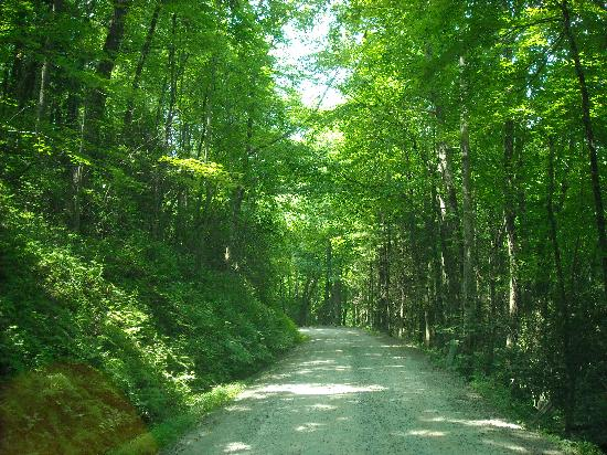 Black Forest Family Camping: entry road to the campground