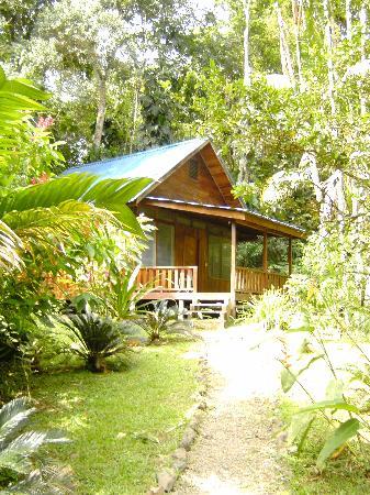 Golfo Dulce Lodge: Gemütliche Bungalows