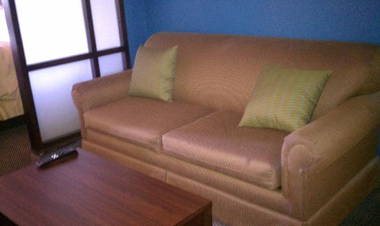 Comfort Suites Airport North: Sofabed