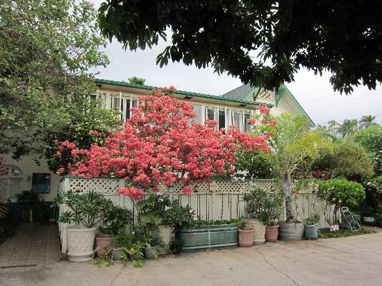 Old Wailuku Inn at Ulupono: The main house