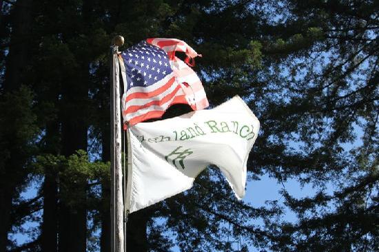 Blackbird Farm: The Highland flag greets you when you arrive.